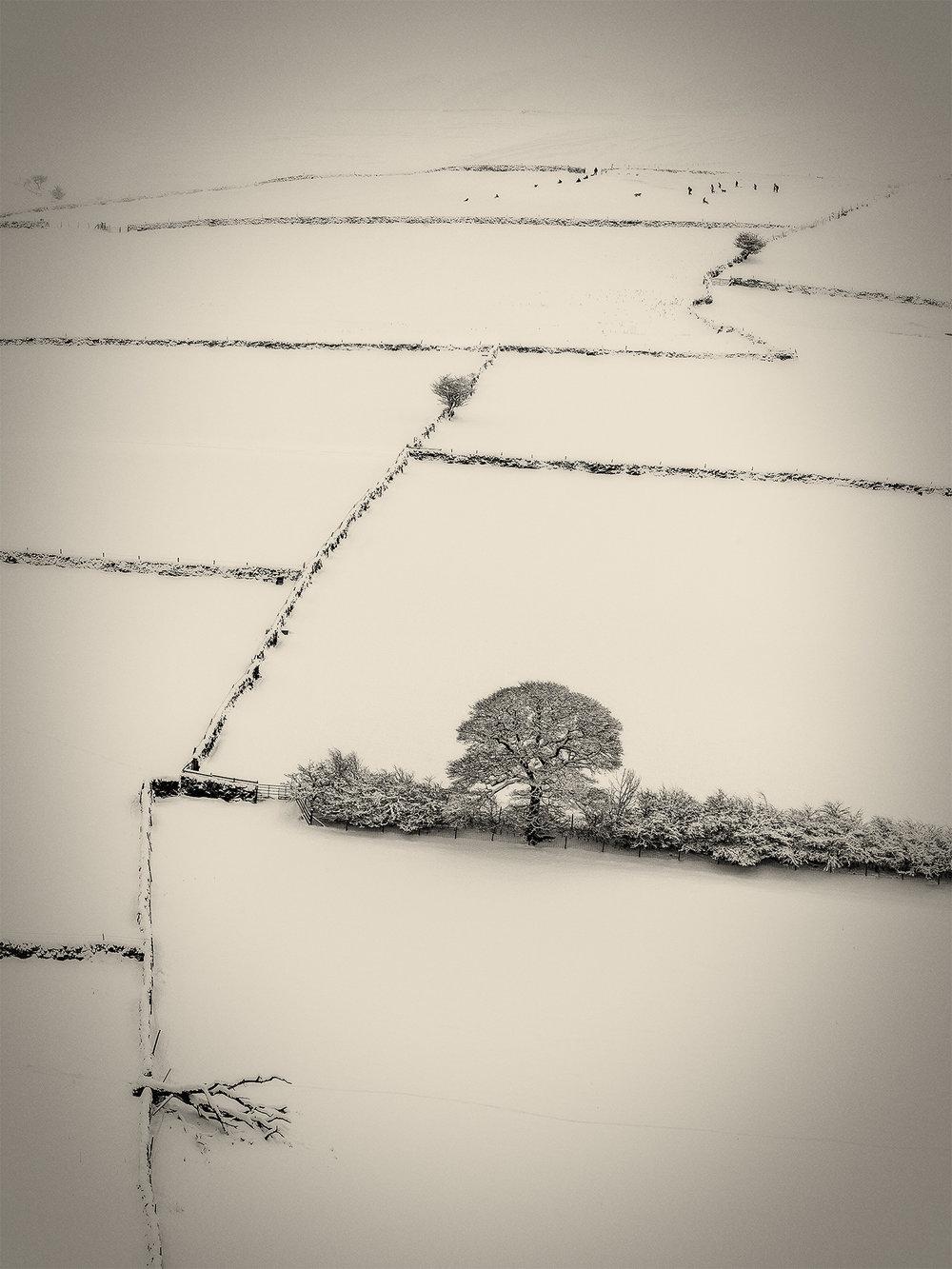 Snowscape_2