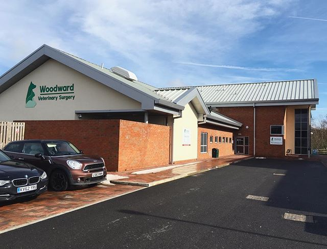 End of defects period successfully closed out for Woodward's Vets Practice in Ashby. #architecture #nottingham #uk #interiordesign #design #archilovers #educationcentre #education #designstudio #architect #interiors #architecture_lovers #architecture_view #interiorproject #interiordeco #renderlovers #archilife #architectlife #furnitureinterior #architectureschool #architectureandpeople #interiorhome #interiorphotography #instarender #architecturephotography #architecture_hunter #interiorinspiration #rendering #revit #riba