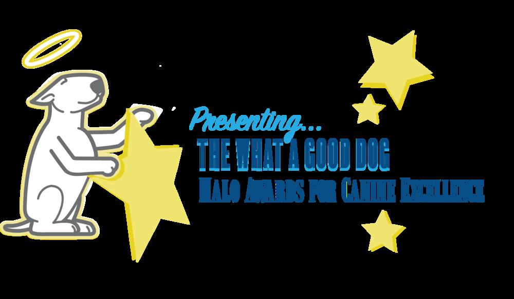 Halo Awards logo.png