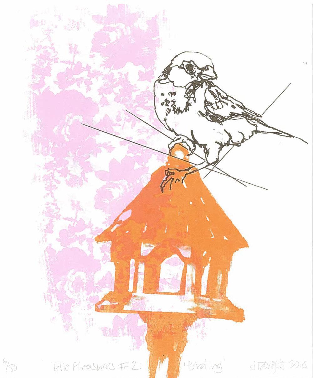 Idle Pleasures No. 2 - 'Birding'
