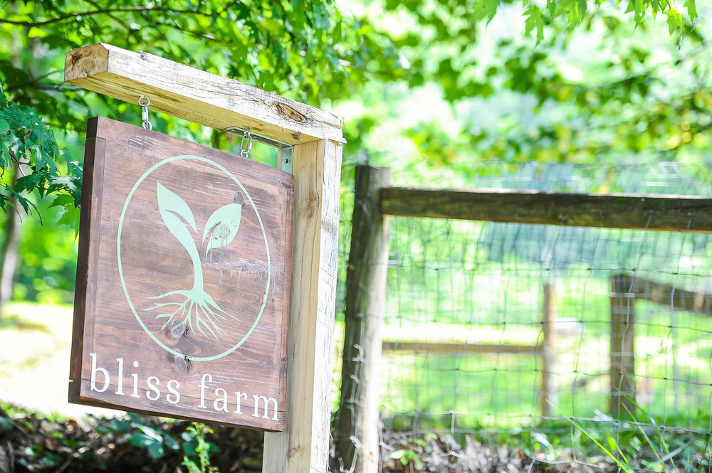 Photo of the sign leading in to Bliss Farm and Retreat