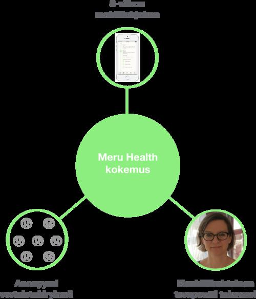 Meru+Health+digiklinikka meru+health+ohjelma+masennus+ahdistus+burnout uupumus+hoito kaavake