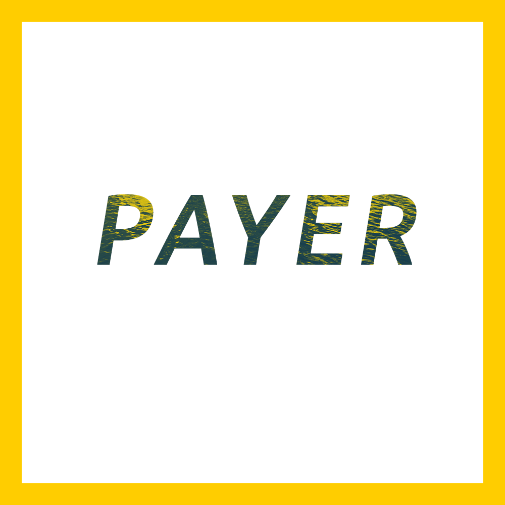 payer1.png