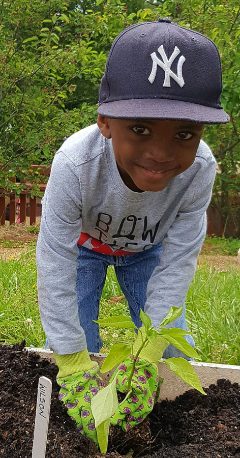 Barrett_ELC_gardening_Planting peppers May 2017.jpg