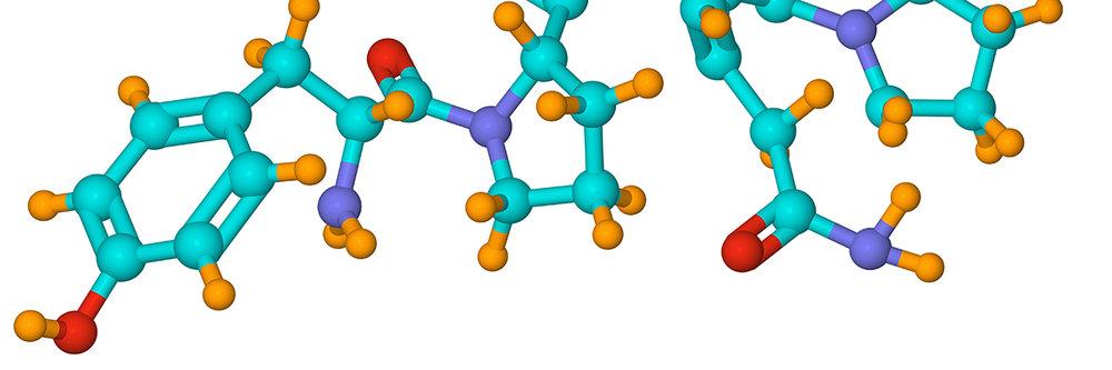 Gluten molecule 2.jpg
