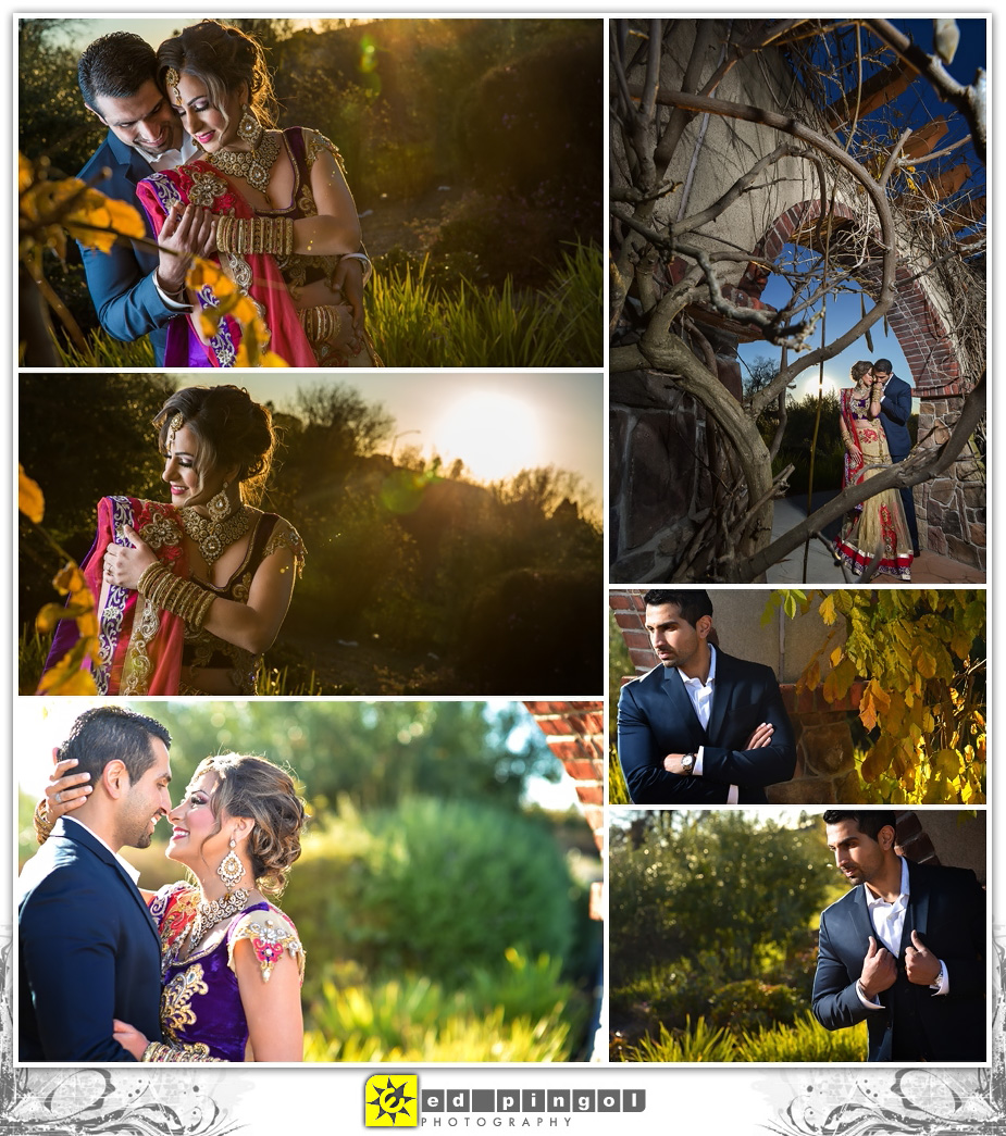 Napa Indian Wedding 3