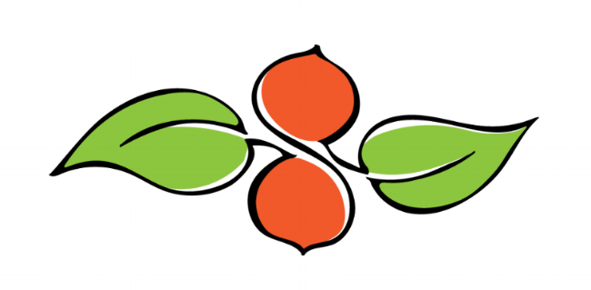 persimmon_graphic.png