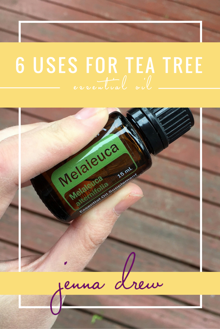 6 Uses for Melaleuca Essential Oil - Jenna Drew