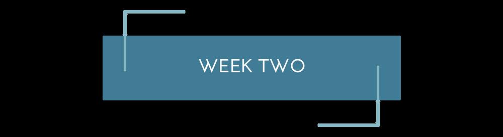 Copy of Sales Page Week%2FModule.png