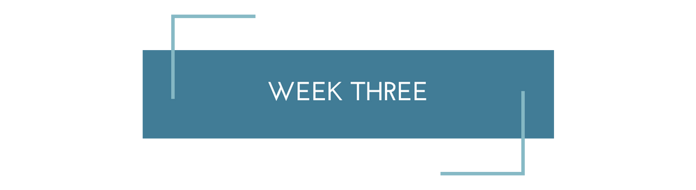 Copy of Sales Page Week%2FModule (1).png