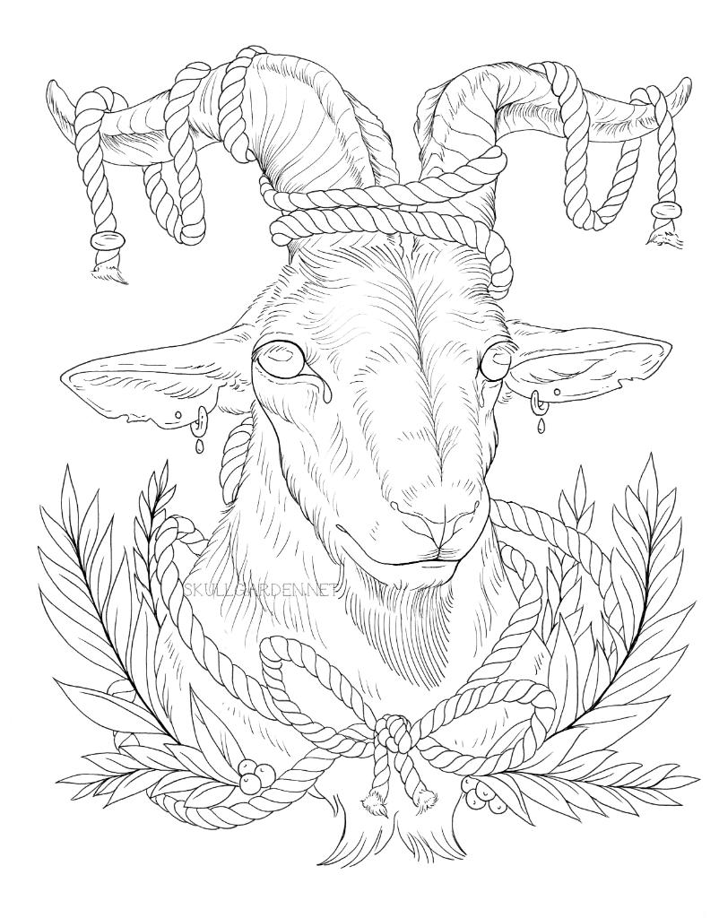 2016 kink goat.png