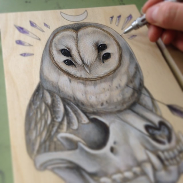 2014 barn owl with raccoon skull wip.png