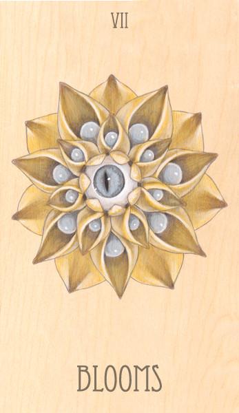 vii of blooms, 2014.