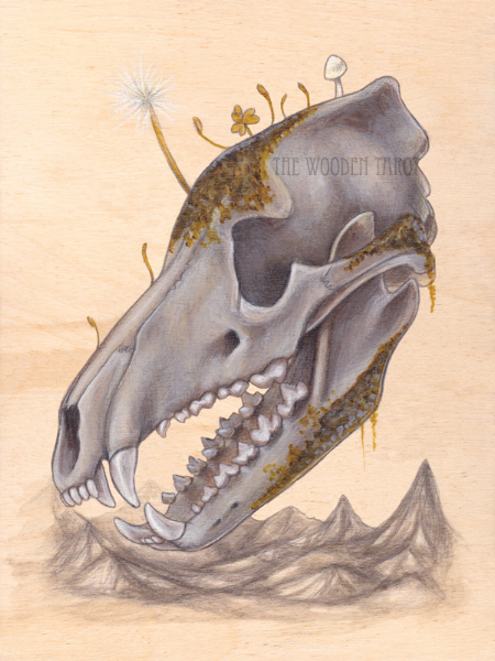 page of bones, 2014.