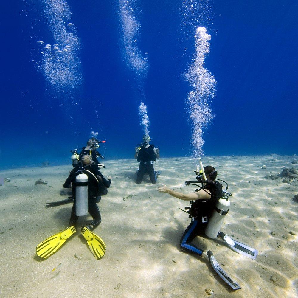 plongeursexercice.jpg
