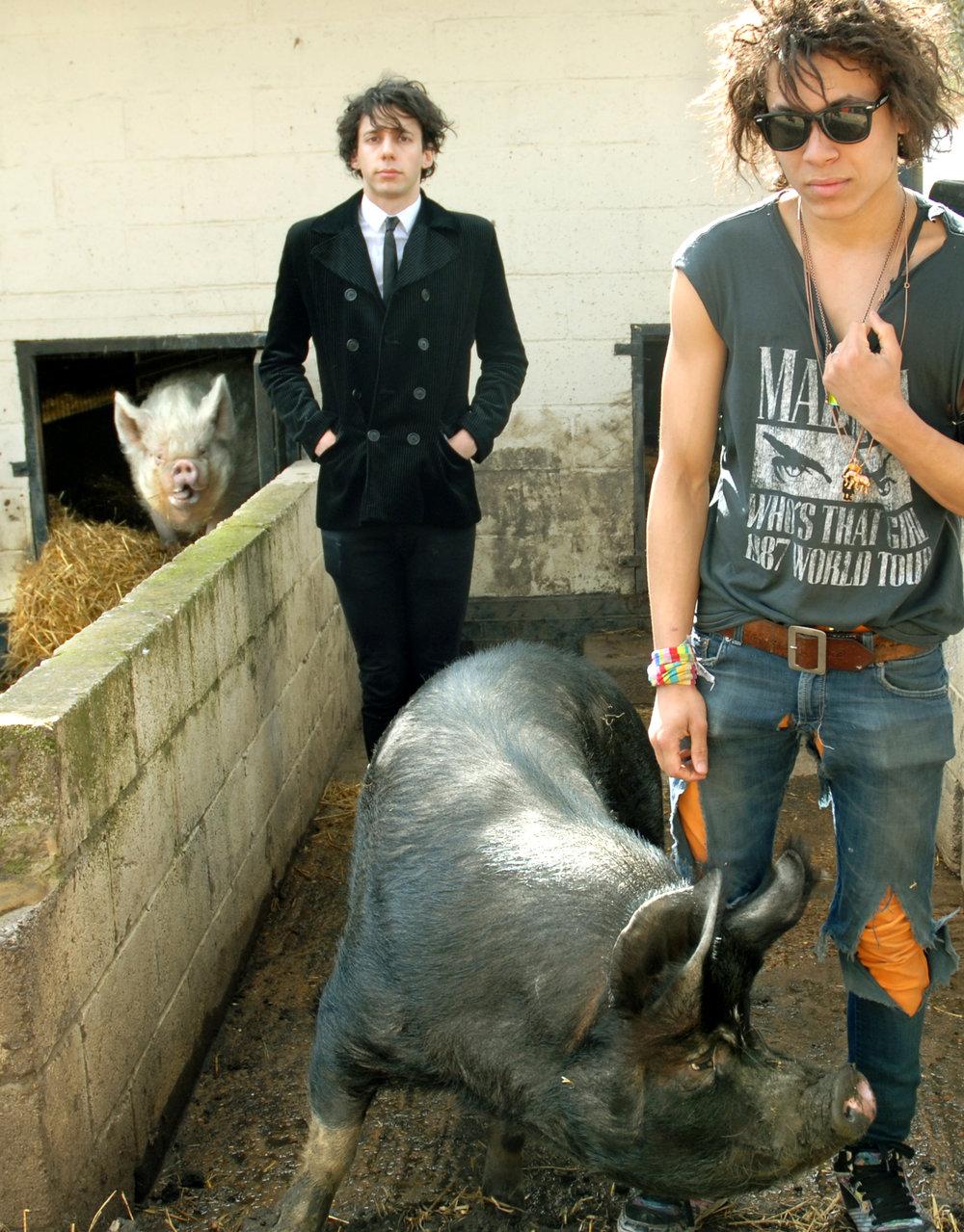 petting farm 1.jpg