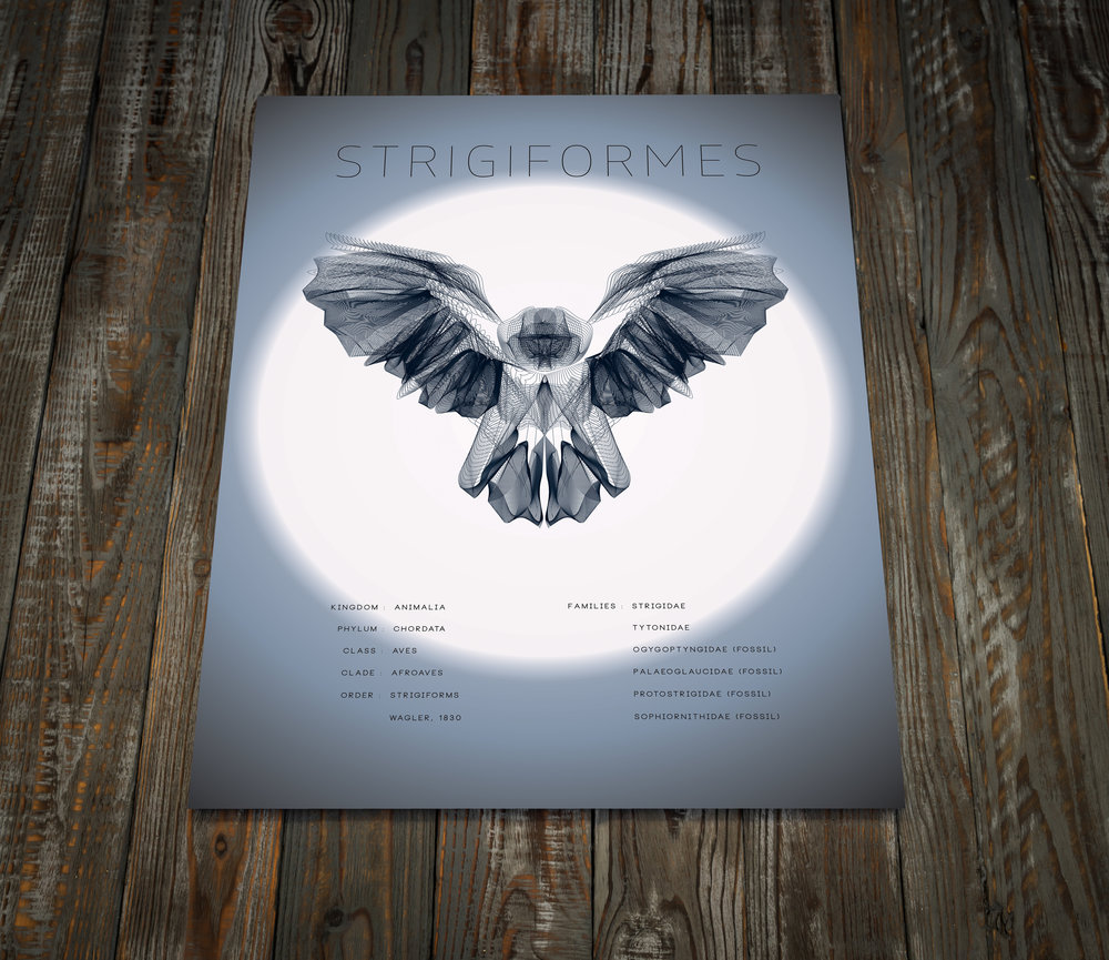 Owl  Wood Floor Mock Up.jpg
