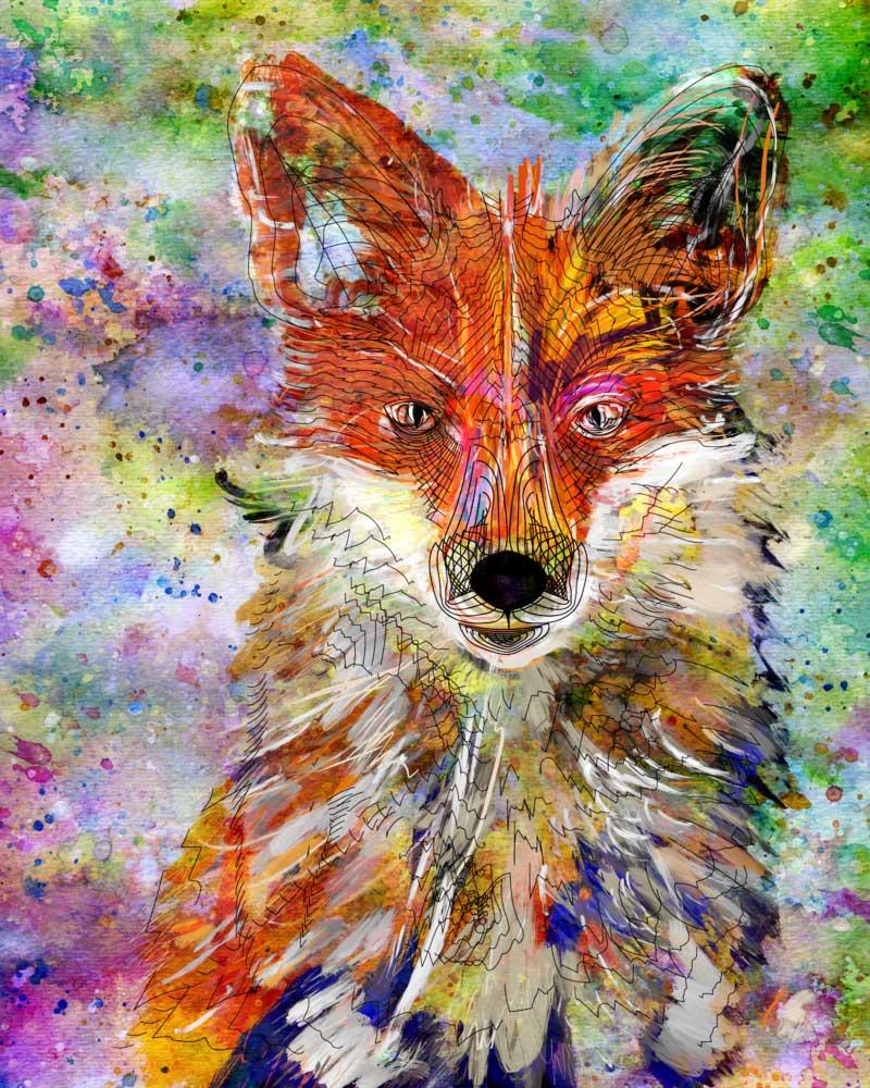 Fox-Line.jpg