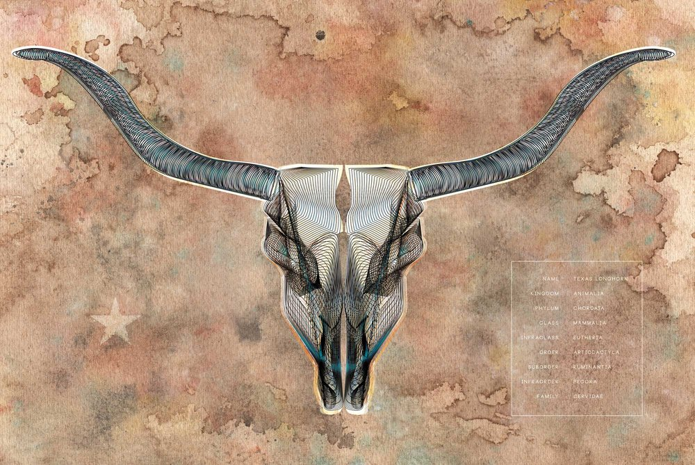 WATER-COLOR-LONG-HORN-01.jpg
