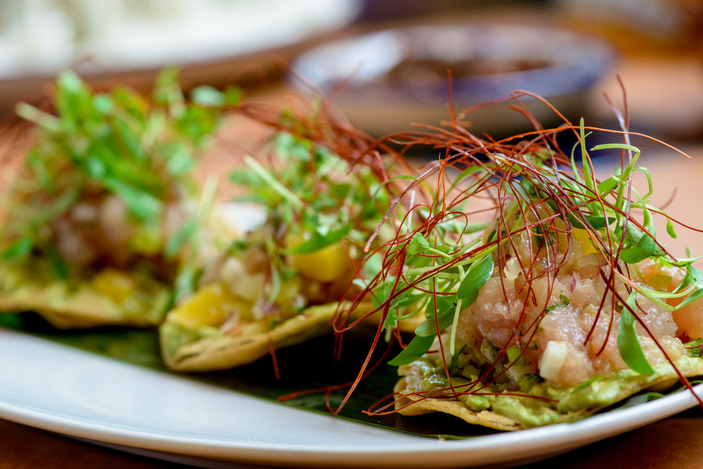 53275-xocitl-red-snapper-ceviche-001.jpg