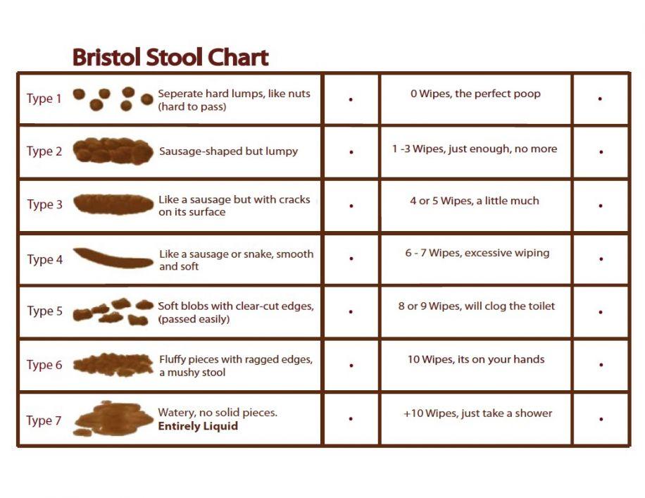 wondergut-bristol-stool-chart.jpg