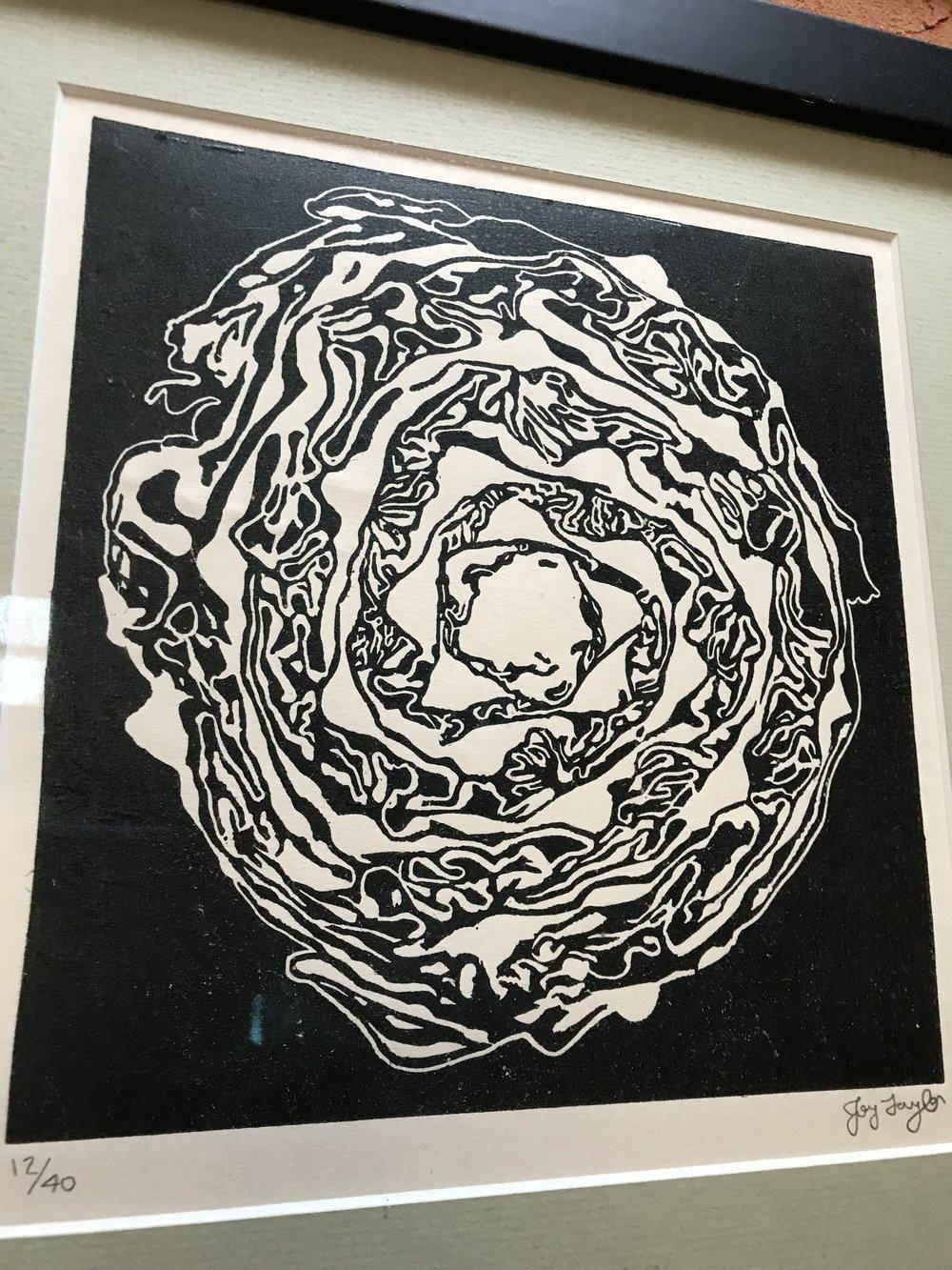 4. Cabbage.JPG