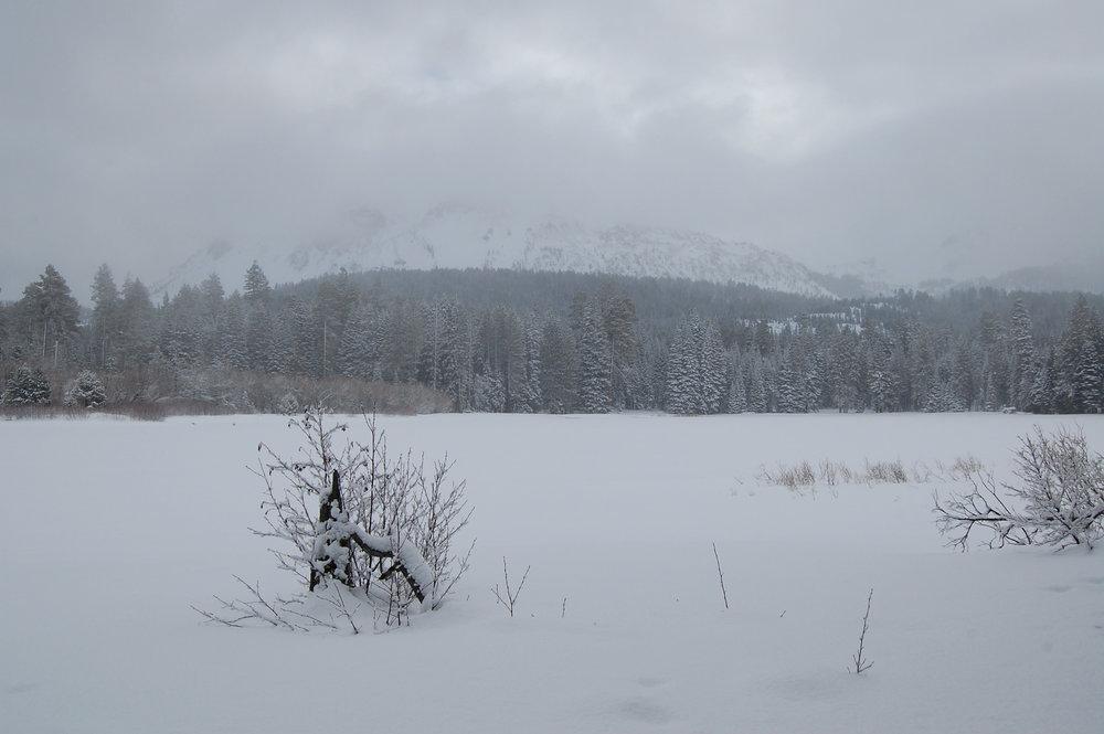 Lake-Manzanita-Mid-Winter-Lassen-Landscape-DavidWahlman.jpg