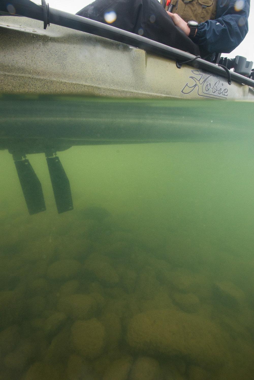 161207_Headwaters-Adventure-Hobie-Kayak-DavidWahlman_0379.jpg