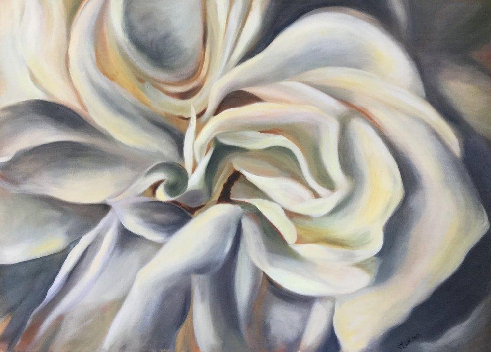 White rose 4.JPG