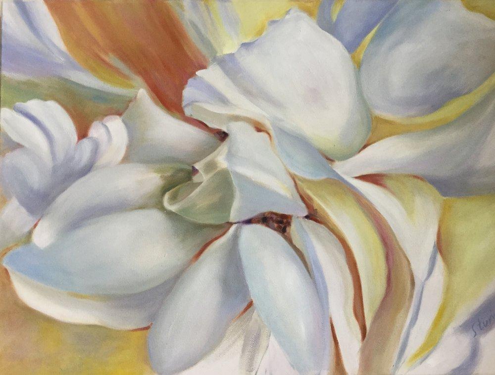 White rose 3.JPG