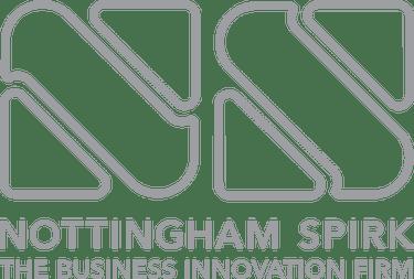 NS-Logo.png