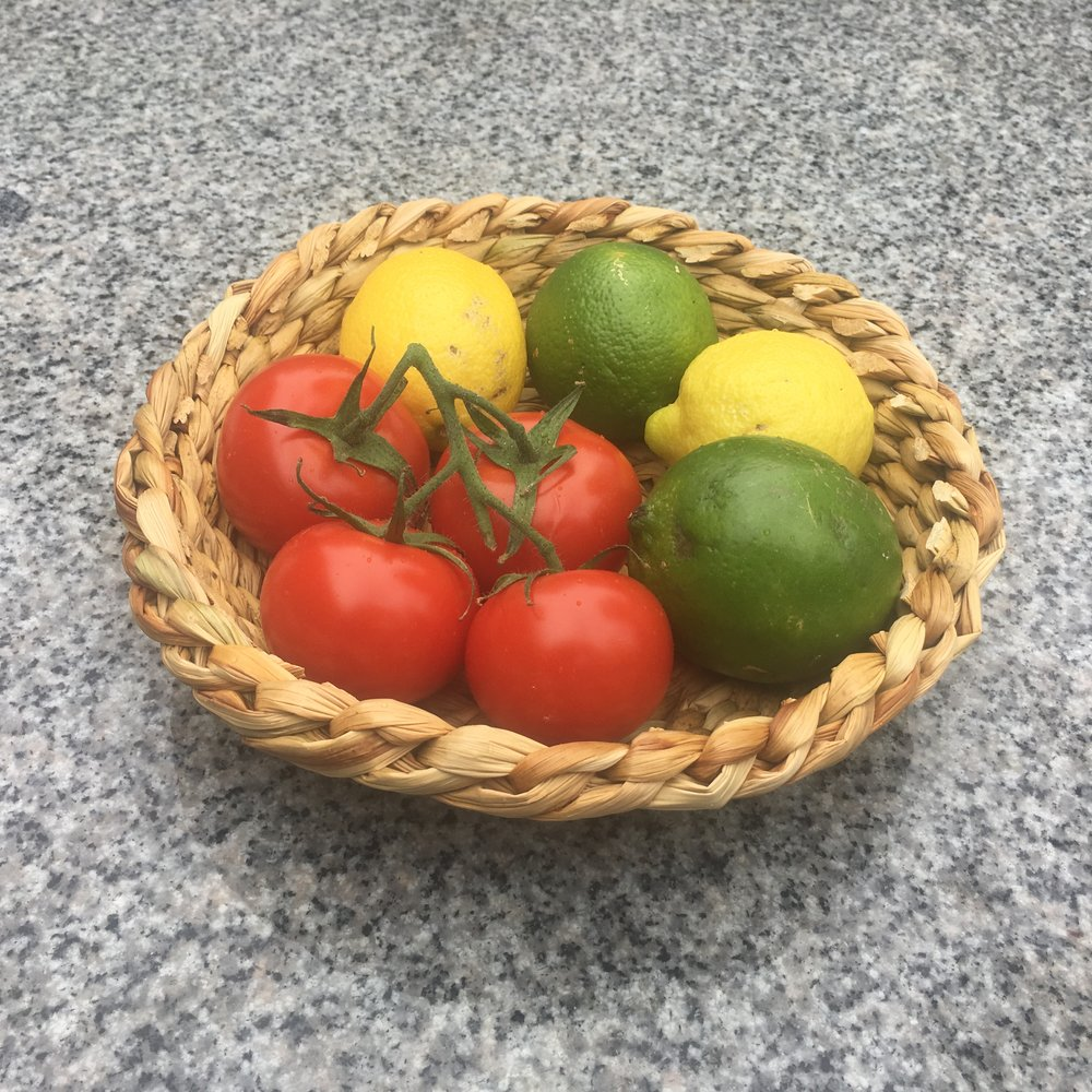 Round tule basket with fruit.jpeg