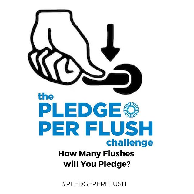 Did you know that the #water you flush down your toilet is cleaner than the water more than 2 billion people drink every day?  But 1 FLUSH of your toilet = #cleanwater for 1 FAMILY for 1 DAY in a developing country! Help us make this a reality. Join the #pledgeperflush challenge. ⠀ .⠀ .⠀ .⠀ .⠀ .⠀ .⠀ #worldwaterday #internationalwaterday #waterforall #bsf #woodmoldbsf #woodmolds4life #cleanwaterforall #dirtywaterkills #makedirtywaterclean #biosandfilters #woodmold
