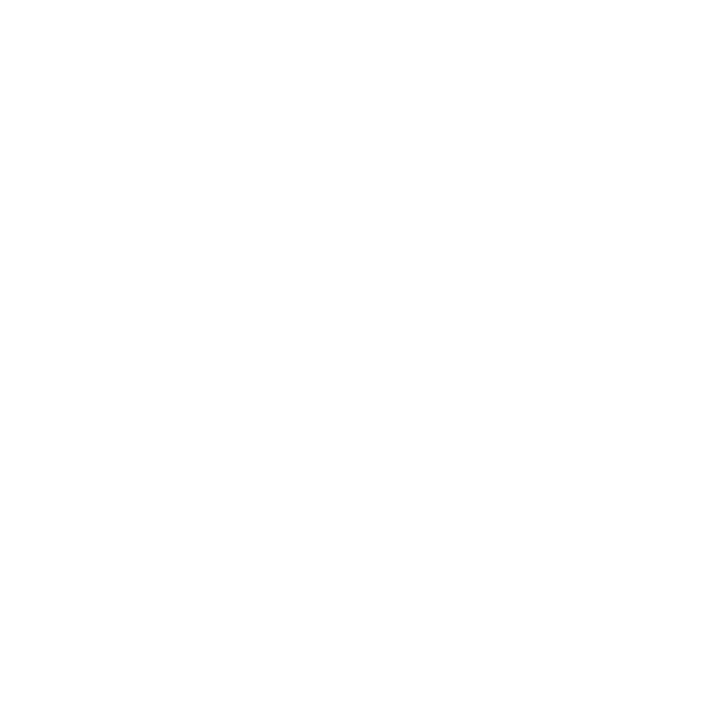 The Scruggs Law Firm