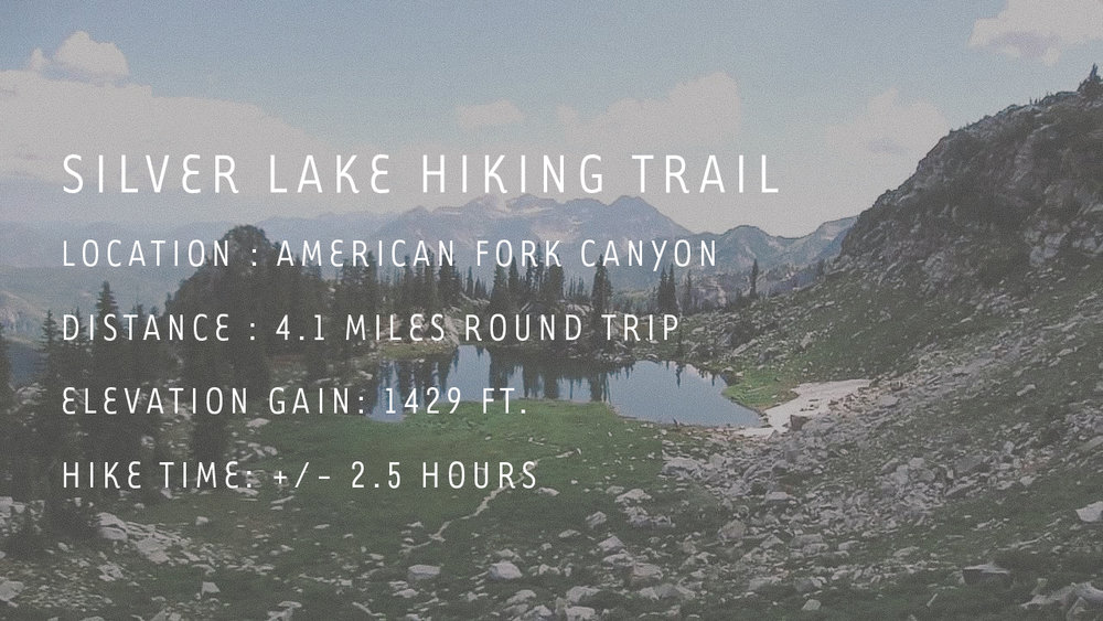 silver lake instructions.jpg
