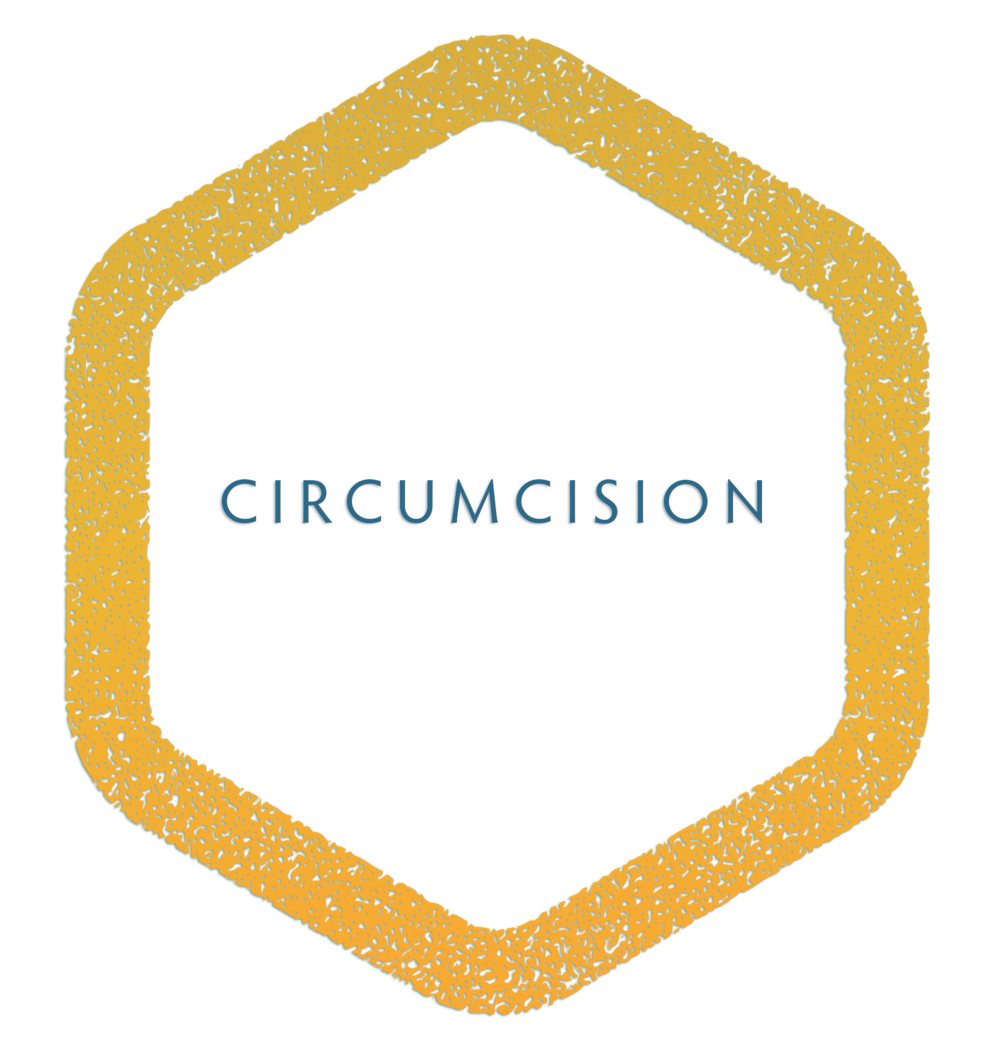 BEVERLY SURGERY CENTER  CIRCUMCISION_TREATMENT.png