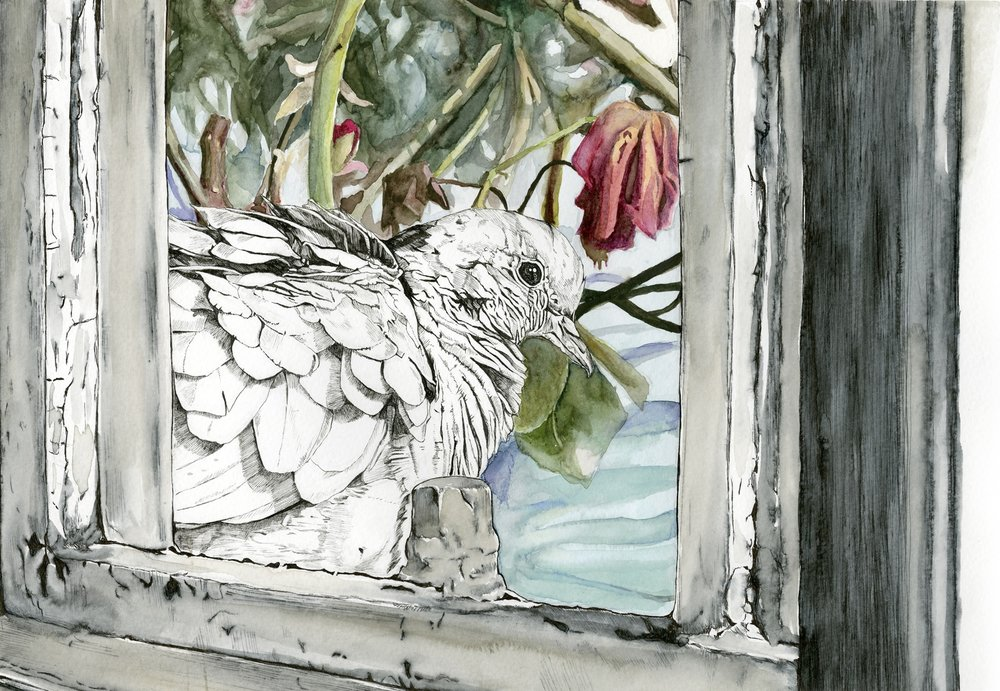 Poorly Insulated Window - 11.5 X 16pen and watercolor on watercolor paperprints available on request