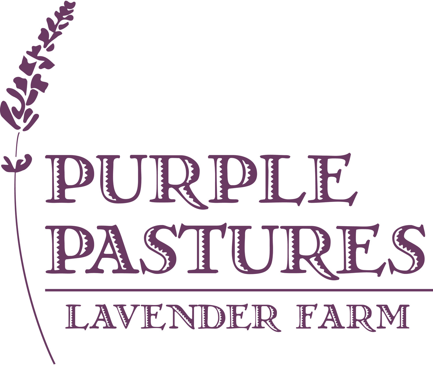 Purple Pastures Lavender Farm
