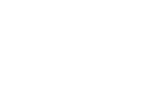 BloomFit Training