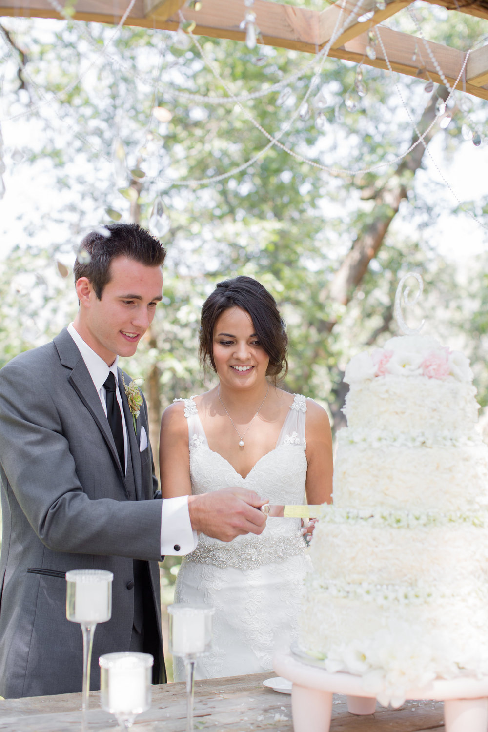 Bethy and Max w gallery-cake web jpg.jpg