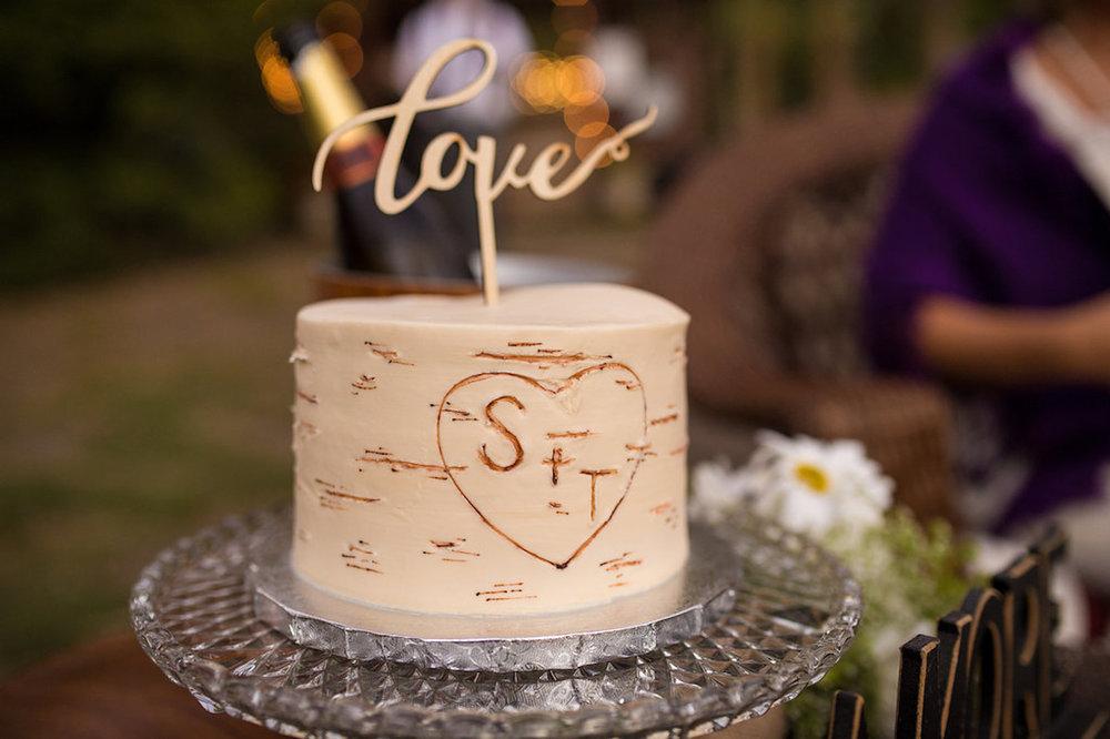 ShaaBree&Todd-cake web.jpg
