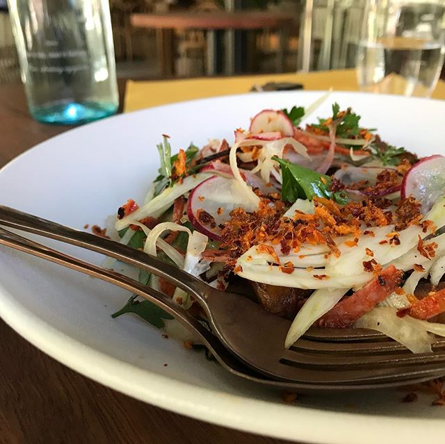 New editions on the menu, our octopus dish is turning out to be a hit! @arthurandco_ #arthurandco_ #menuchanges #fremantleoctopus #spicysausage #fennel #radish #perfectcombo #fresh #food  #local #fresh #produce # #supportlocal #pertheats #perthfood #perthrestaurants #eatwesteatbest #perthfoodie #perthcity