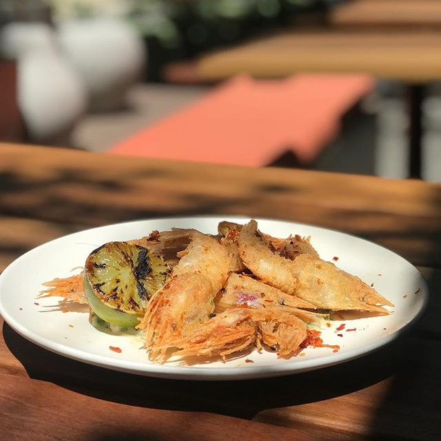 Today's special @arthurandco_ soft shelled razor back prawns, plantains & jalapeño. Come join us for happy hour 5pm - 6pm 🍺 🍷 🦐 #arthurandco_ #happyhour #prawns #softshell #barbites #drinkingfood #food #pertheats #perthfoodies #barfood #perthbars #perthrestaurants #snacks #seafood #eatthewholething #foodofperth