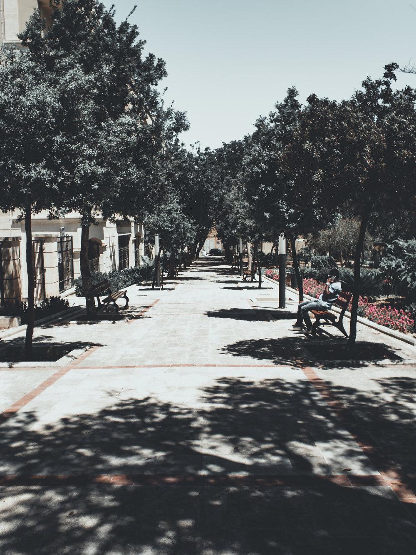 malta -106.jpg