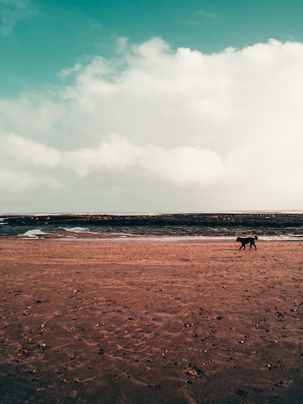 horizons 2.jpg