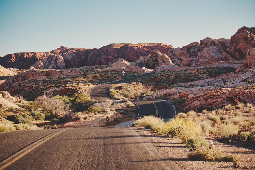 road fall.jpg