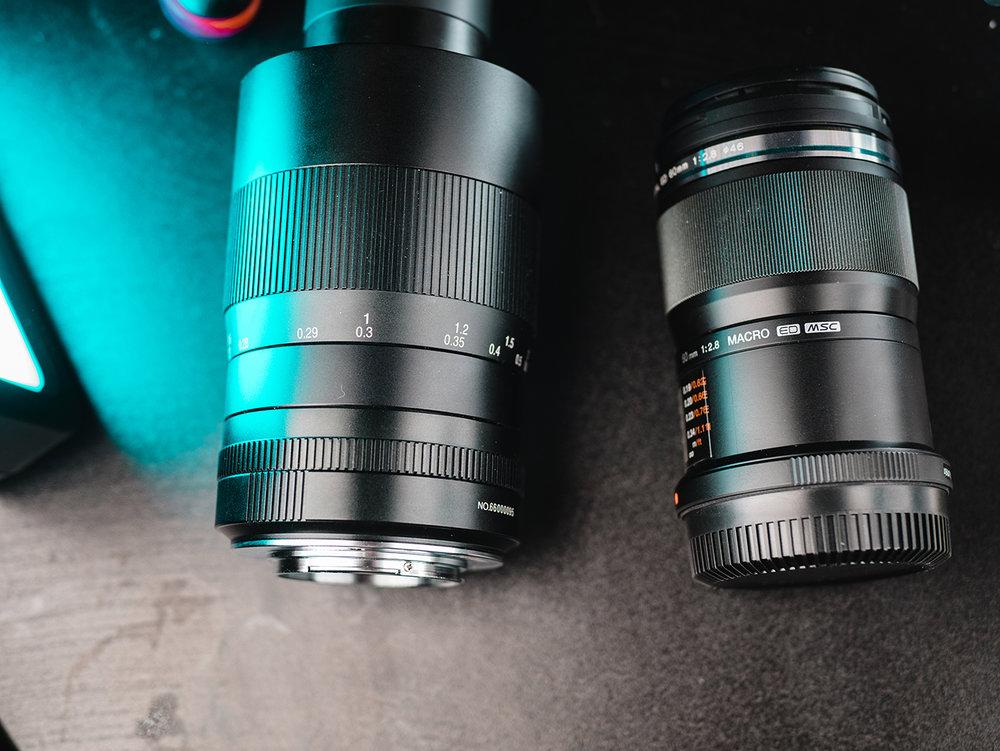 macro lens photos-4.jpg