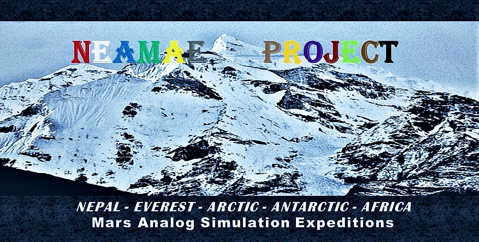 neamae_logo-edited.jpg