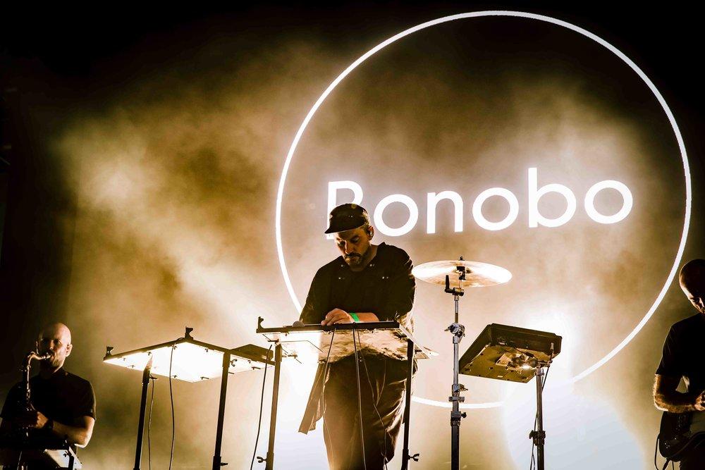 "BONOBO 8"" x 12"""
