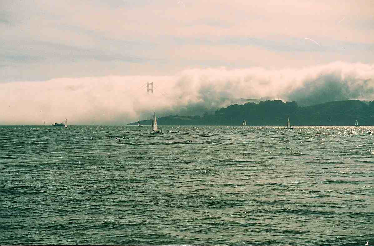 San Francisco Bay, Photo Credit: Marjorie Childress